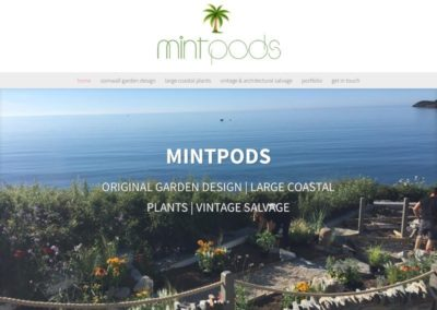 MINTPODS